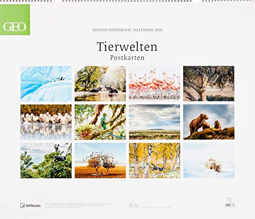 GEO Edition: Tierwelten 2020 - Partnerlink