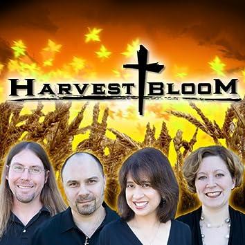 Harvestbloom