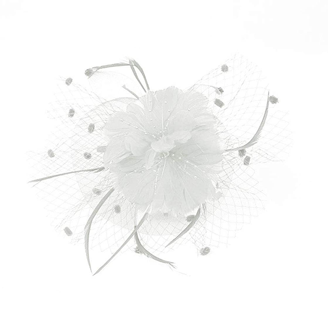 早める呼吸するプレビスサイトBeaupretty魅惑的な帽子羽メッシュネットベールパーティー帽子ピルボックス帽子羽の魅惑的なキャップレディース結婚式宴会カクテルパーティー(ベージュ)