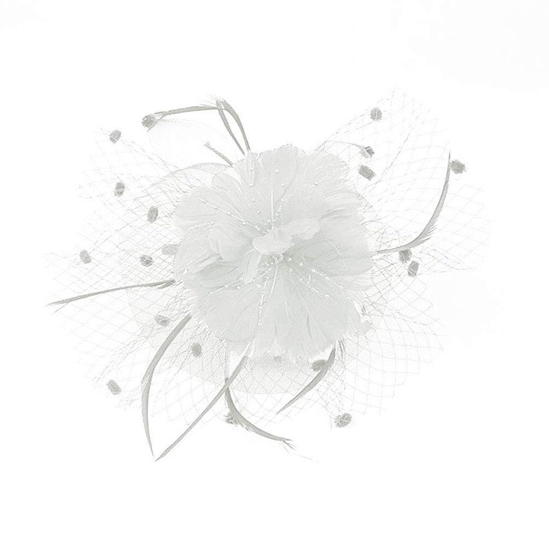 オセアニア悩むさておきBeaupretty魅惑的な帽子羽メッシュネットベールパーティー帽子ピルボックス帽子羽の魅惑的なキャップレディース結婚式宴会カクテルパーティー(ベージュ)