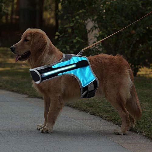 DAIJUN LED Dog Harness; LED Light Dog Safety Vest for Night Walking; Illuminated and Reflective Dog Harness; Adjustable Soft Padded Suit for Small Medium Large Dog (S)