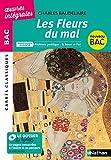 Les Fleurs du Mal - Charles Baudelaire - La boue et l'or – Carrés Classiques Œuvres Intégrales