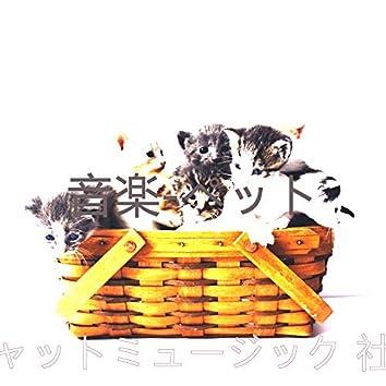 音楽-ペット