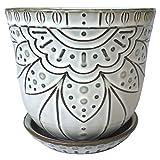 Maceta de cerámica de 6 pulgadas con orificio de drenaje y platillo para plantas, maceta grande redonda para interior de orquídeas suculentas (blanco crema, vid de flores)