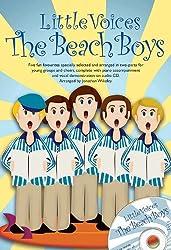 Little Voices - The Beach Boys + CD
