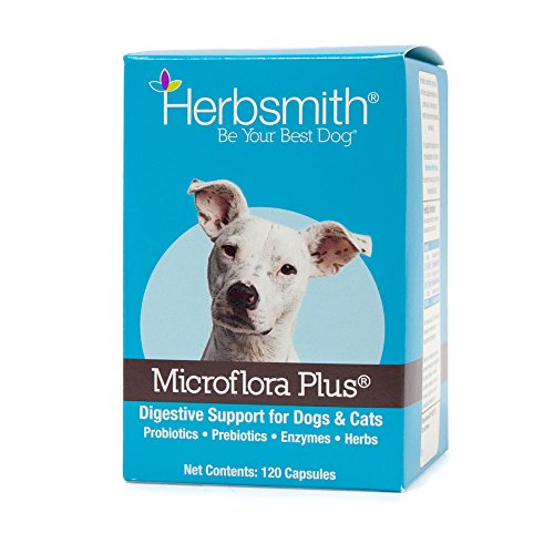 Herbsmith Microflora Plus – Dog Digestion Aid –Probiotics and Digestive Enzymes for Dogs – Prebiotic for Dogs – 120 Capsules