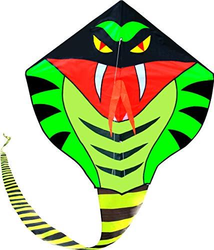 Hengda Kite 15m Large Power Snake Kites with Flying Line Outdoor Fun Sports Kite by Hengda kite