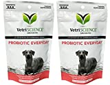 VetriScience Laboratories Probiotic Everyday for Dogs, 3.17 oz Pack of 2