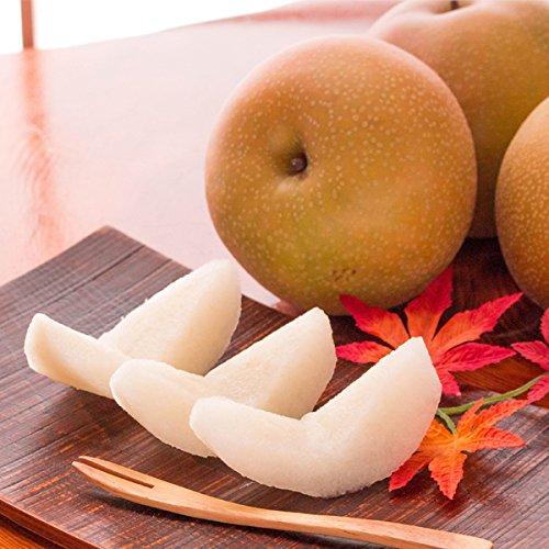 風味絶佳.山陰 秋甘泉(あきかんせん)5kg詰(10〜14玉入) 鳥取県産 赤秀