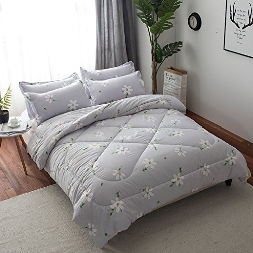 MMM Décolletage d'hiver plus épais Conservez une chambre chaude de dortoir Individuel double taille matelas Literie de printemps et d'automne 1.5-4kg (taille : 200 * 230m (3kg))