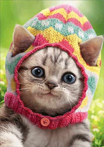 Kitten Wears Knit Egg Cap - Avanti Cute Cat Easter Card (Greeting Card)