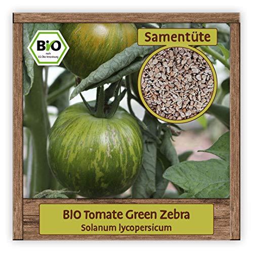 BIO Tomaten Samen Fleischtomate Saatgut Gemüsesamen alte historische Sorte Green Zebra