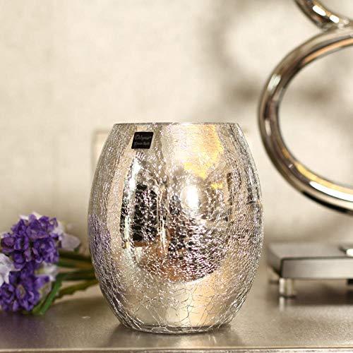 Vase Leichte Luxusbeschichtung Silber Glasvase Blumenfarbe Glasvase Kugel Glasvase Neues Haus Getrocknete Blumen Lagerung Dekoration Geschenk 9,5 cm X 15 cm