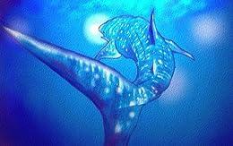 [入り江わに, JIN]のサメのこどもたち