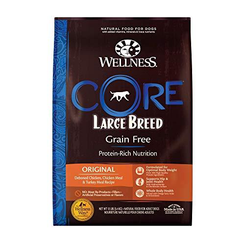 Wellness Core Grain Free dog food