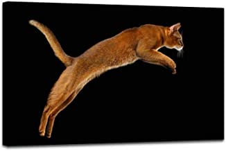 Framed Art Canvas Print Closeup Jumping Abyssinian cat Isolated on black in Profile Painting Colorful Wall Art for Living Room Decor Ready to Hang - 1 PCS 24x36inch(60x90cm)