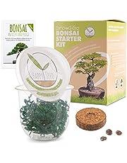 GROW2GO Bonsai Starter Kit Growing Set incl. GRATIS eBook - plantenset van minibroeikas, zaden & grond - duurzaam cadeau-idee voor plantenliefhebbers (Tamarinde)