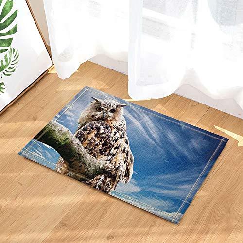Decoración de aves Búho vintage con ojos afilados en tablones de madera Alfombras de baño Alfombra de baño antideslizante Entradas en el piso Puerta de entrada interior Alfombra de baño para 5