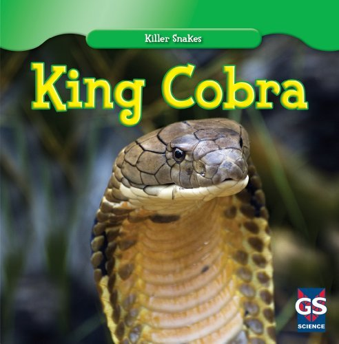 By Audry Graham King Cobra (Killer Snakes) [Paperback]