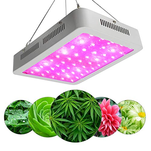 QYWSJ LED Élèvent La Lumière, Lampe de Centrale Haute Puissance à Double Spectre de Spectre 600W, Rouge Et Bleu Mélangé, pour Les Plantes d'Intérieur à Effet Serre Légumes Hydroponiques
