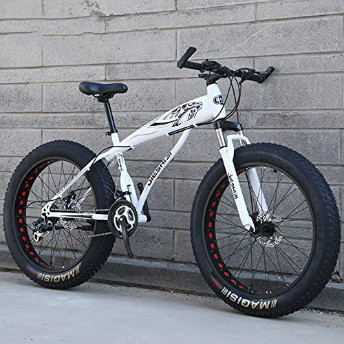 DANYCU Adult Mountain Bike Bicycle 26 Inch Thick Wheel Bikes Dual Disc Brake Bicycle, High-carbon Steel Frame, Fat Tire Hardtail Mountain Bike,E,30 speed