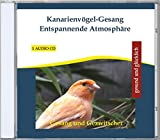 Best Canaries - Kanarienvögel-Gesang Canary Canaries Songs and Calls for Relaxation Review