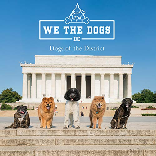 We the Dogs DC: Dogs of the District