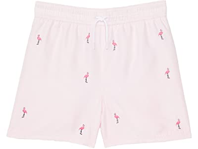 Janie and Jack Embroidered Swim Shorts (Toddler/Little Kids/Big Kids)