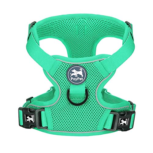 PoyPet Reflective Soft Breathable Mesh Dog Harness Choke-Free Double Padded Vest with Adjustable Neck and Chest(Mint Green,M)