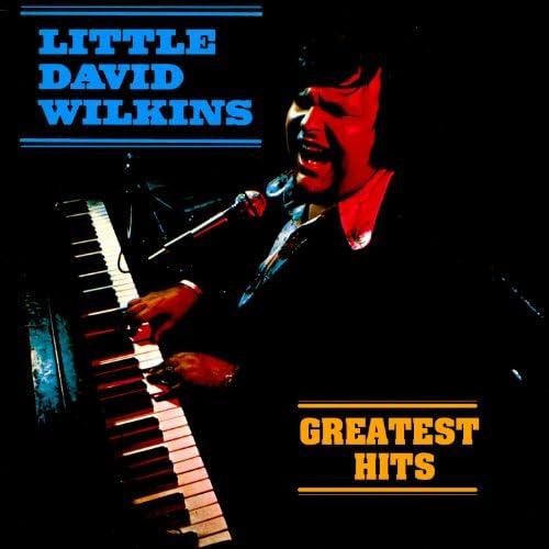 Little David Wilkins
