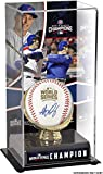 Anthony Rizzo Chicago Cubs 2016 MLB World Series Champions Autographed World Series Logo Baseball and Baseball Display Case with Image - Autographed Baseballs