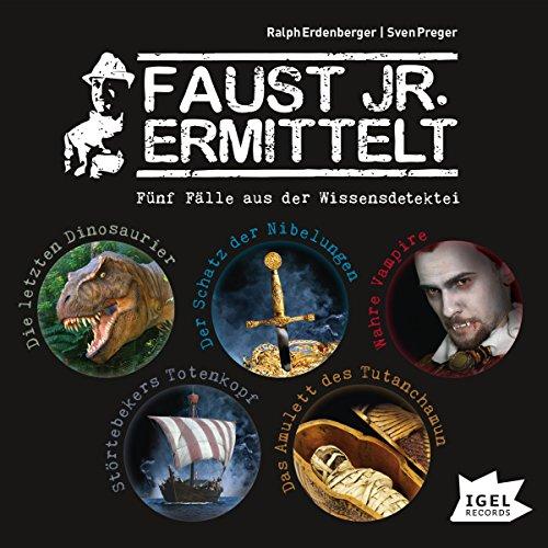 Fünf Fälle aus der Wissensdetektei (Faust jr. ermittelt) audiobook cover art
