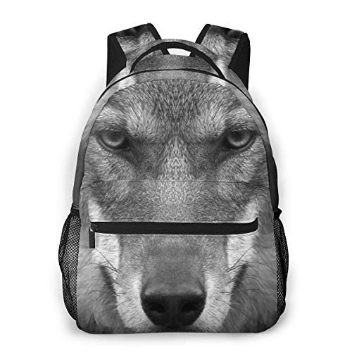 DJNGN Gift A Color Lion Portrait Men and Women Casual Style Canvas Backpack School Bag,