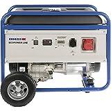Endress ESE 6000 DBS Stromerzeuger - 2