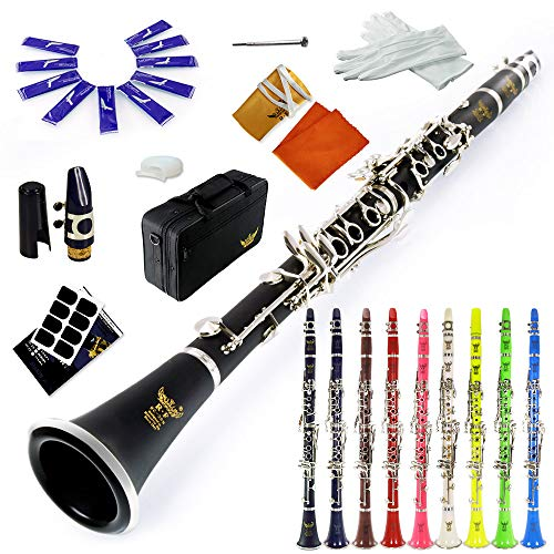 ROFFEE clarinet beginner student level 26N B flat ABS nickel