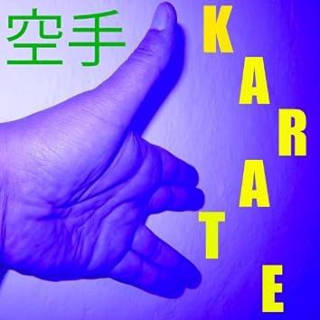 Karate-Musik Vol. 11