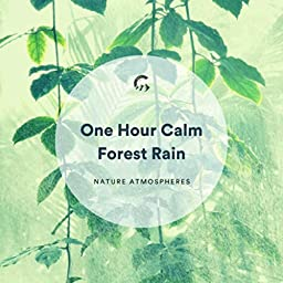 1 Hour Calm Forest Rain by Nature Atmospheres, Healing