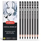Best Charcoal Pencils - PANDAFLY Professional Charcoal Pencils Drawing Set - 8 Review
