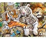 Bimkole 5D Diamond Painting DIY Kits Tigre Lion Léopard, Animal Bête Broderie Diamant Kits De Broderie Au Point De Croix Strass Rond Résine Peinture Décor à La Maison, (40x50 cm)