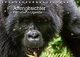 Affengesichter - Primaten in Uganda (Tischkalender 2021 DIN A5 quer)