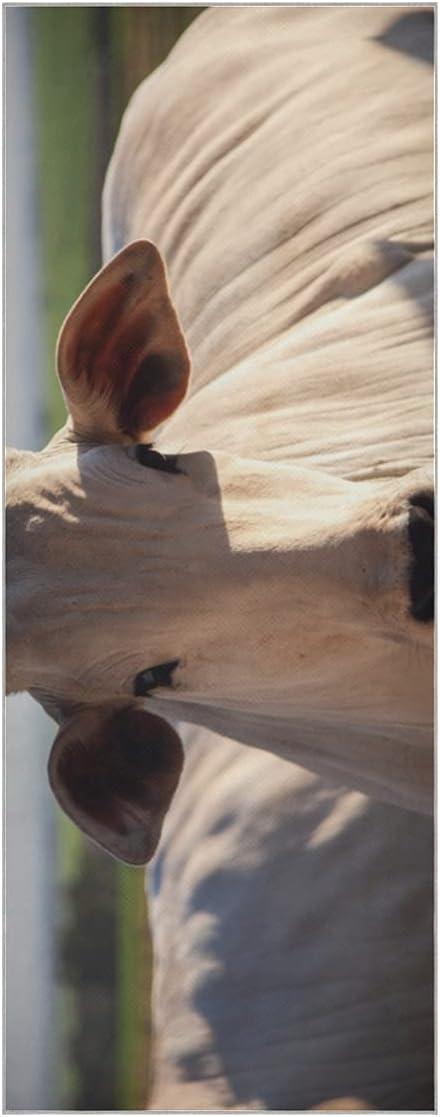 Max 62% OFF Hot Sale Yoga Mat Towel Herd So Super Nelore of Cattle