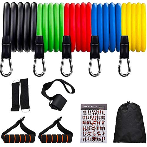 gracosy Resistance Bands, Exercise Bands Set Yoga Pilates Abs Exercise Fitness Tube Workout Bands Training Physical Therapy Home 11 PCS