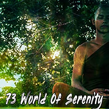 73 World of Serenity