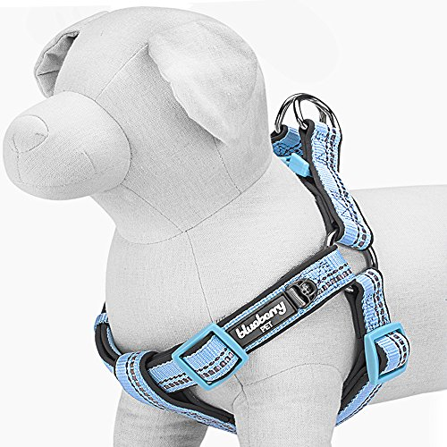 Blueberry Pet Step-In Geschirre 60-75cm Brust Hellblau 3M Reflektierendes Gepolstertes Hundegeschirr, Zugentlastend Groß, Passender Hundehalsband erhältlich Separate