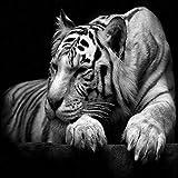 N / A Tigre Blanco Pintura sobre Lienzo Pintura Decoración para el hogar Utilizado para la decoración de la Sala Imágenes Modernas de Animales sin Marco 60x130cm
