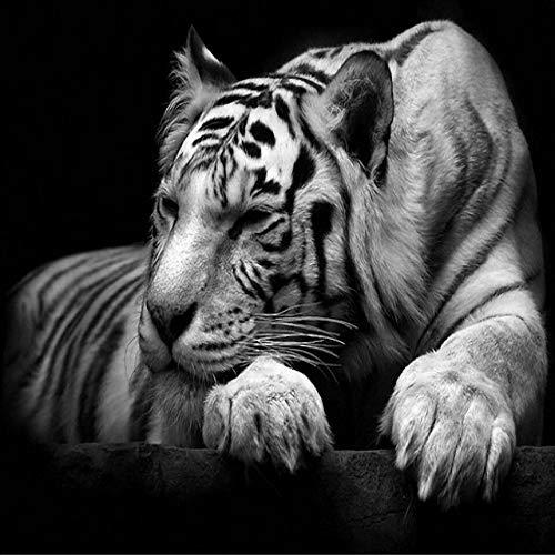 N / A Tigre Blanco Pintura sobre Lienzo Pintura Decoración para el hogar Utilizado para la decoración de la Sala Imágenes Modernas de Animales sin Marco 50x75 cm