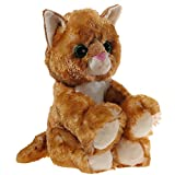 Heunec 246874 MISANIMO Glitter-Kitty Katzen-Baby Gold, bunt