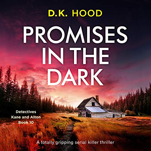 Promises in the Dark cover art