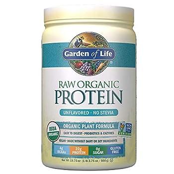 Best raw vegan protein powder Reviews