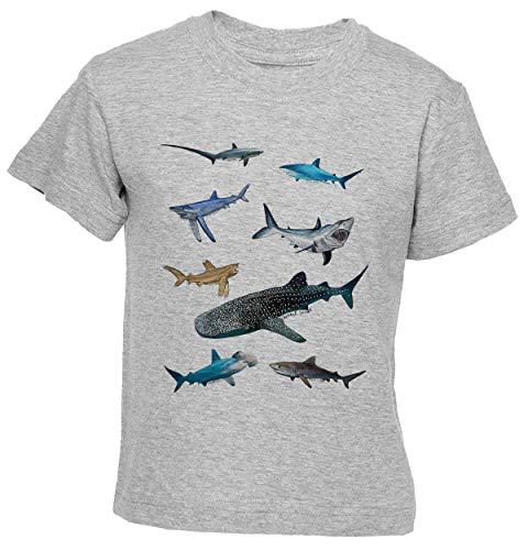 Delavi Squalo Gruppo T-Shirt Ragazzi Ragazze Bambini Grigio T-Shirt Boys Girls Kids Grey